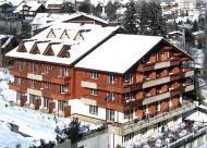 Arena Hotel Steinmattli Foto 1