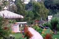 Hotel Dalyan Resort Foto 2
