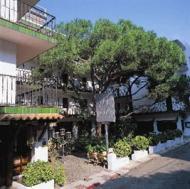 Hotel Els Pins Foto 2