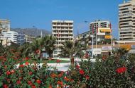 Foto van Hotel Los Jazmines Costa del Sol