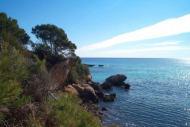 Jiba Playa de Palma